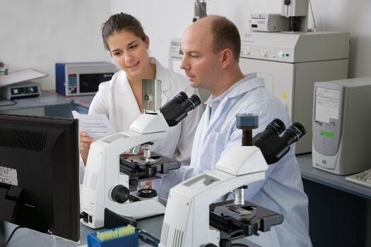 Distelkamp electronic lötstationen mikroskope digitalmikroskope